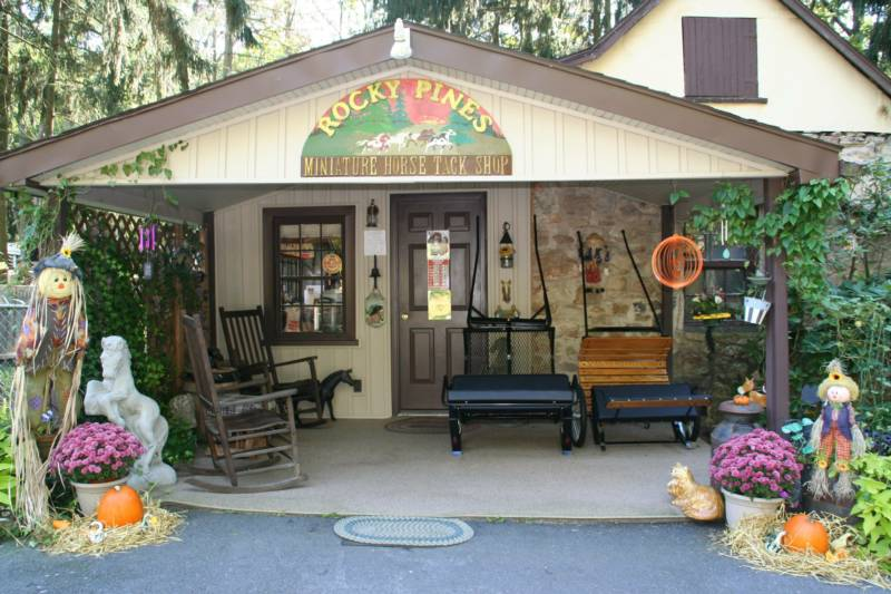 rocky-pines-miniature-horse-tack-shop